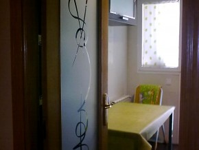 cristal para puerta con dibujo transparente sobre fondo mate